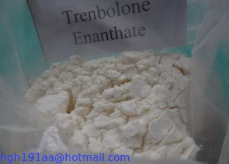 Muscle Building Trenbolone Enanthate supplier